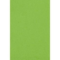 Popierinė staltiesė / salotinė