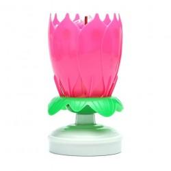 Grojanti žvakė rožinė