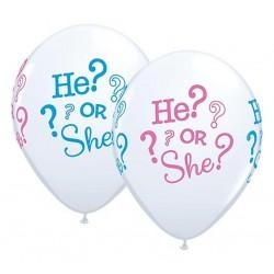 """Guminiai balionai """"He or She?"""""""